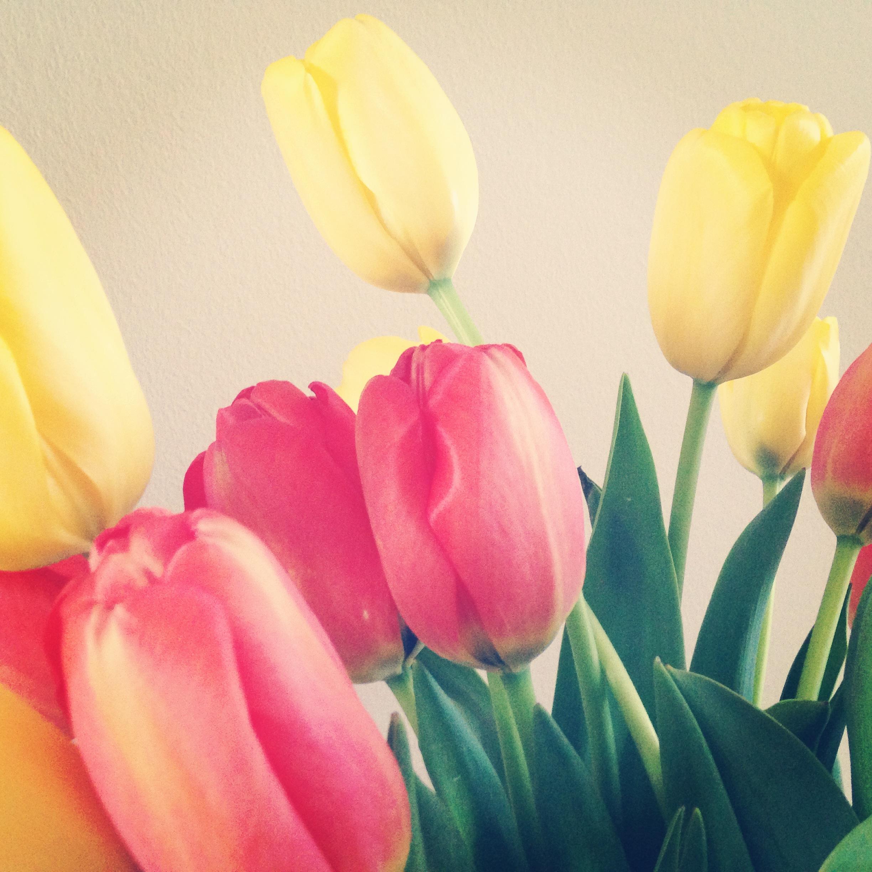 Instagram starla.de Mai 4